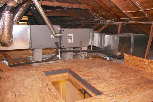 Dealing with Spring Mold Growth
