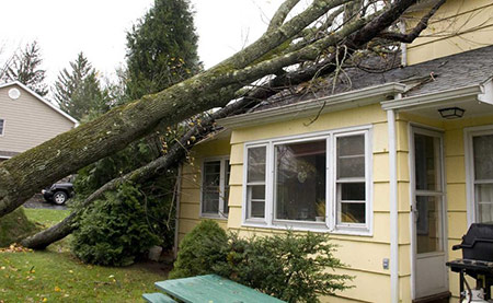 Types of Storm Damage Restoration