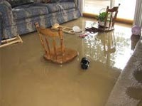 Risks of Not Dealing with Water Damage Immediately