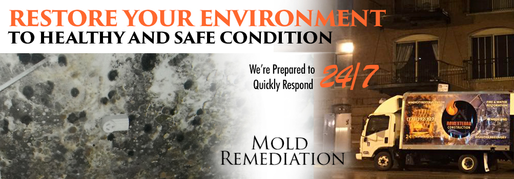 Mold Remediation in the Greater Chicagoland City Area