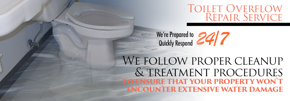 Toilet Overflow Repair Service in Greater Chicagoland